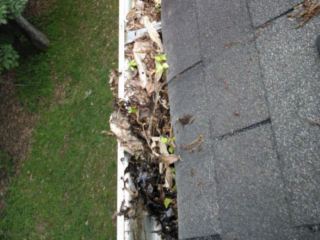 Gutter Cleaning Service by Capital City Powerwashing in Richmond, VA